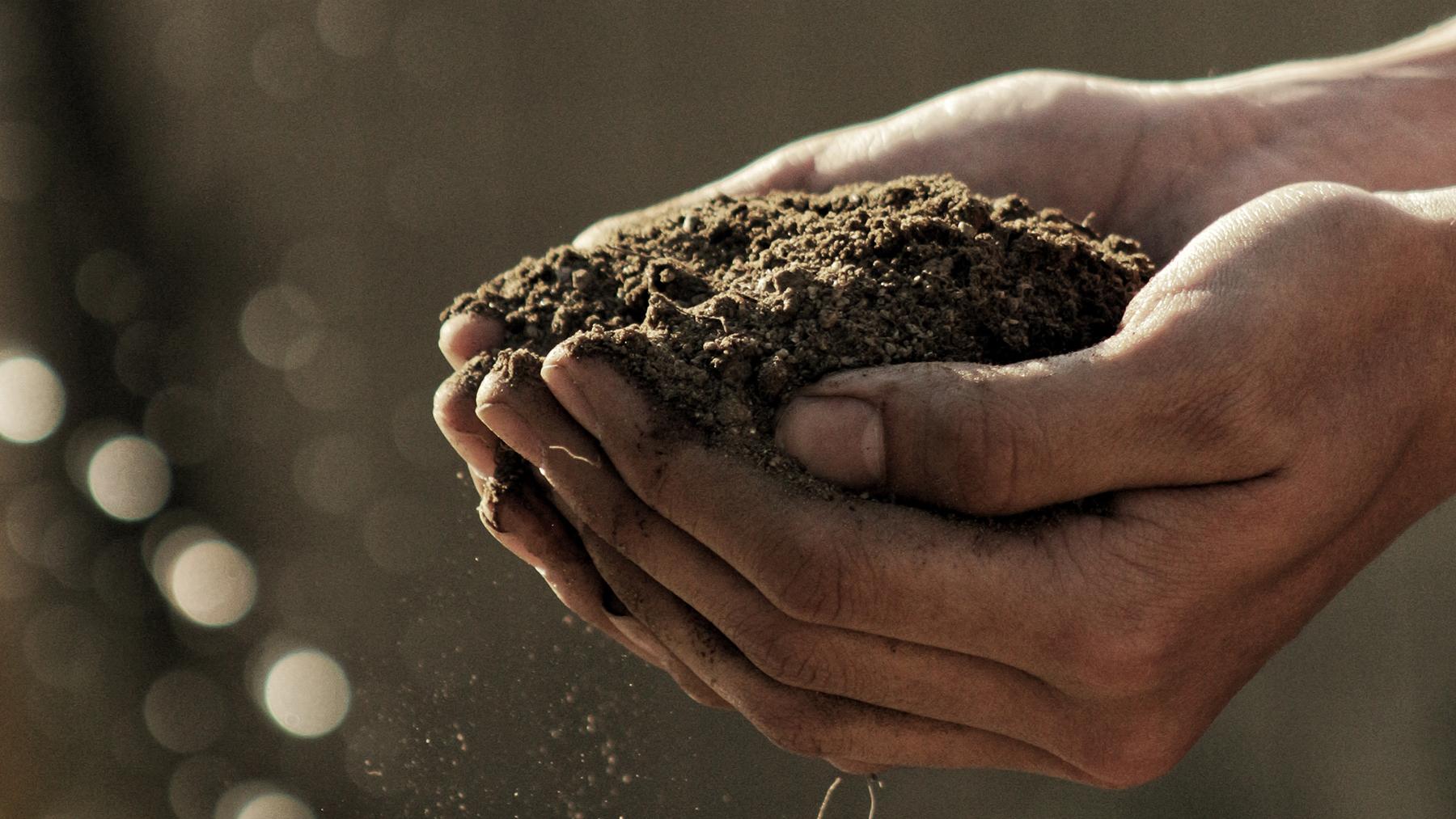 Boden kann einiges an CO2 speichern