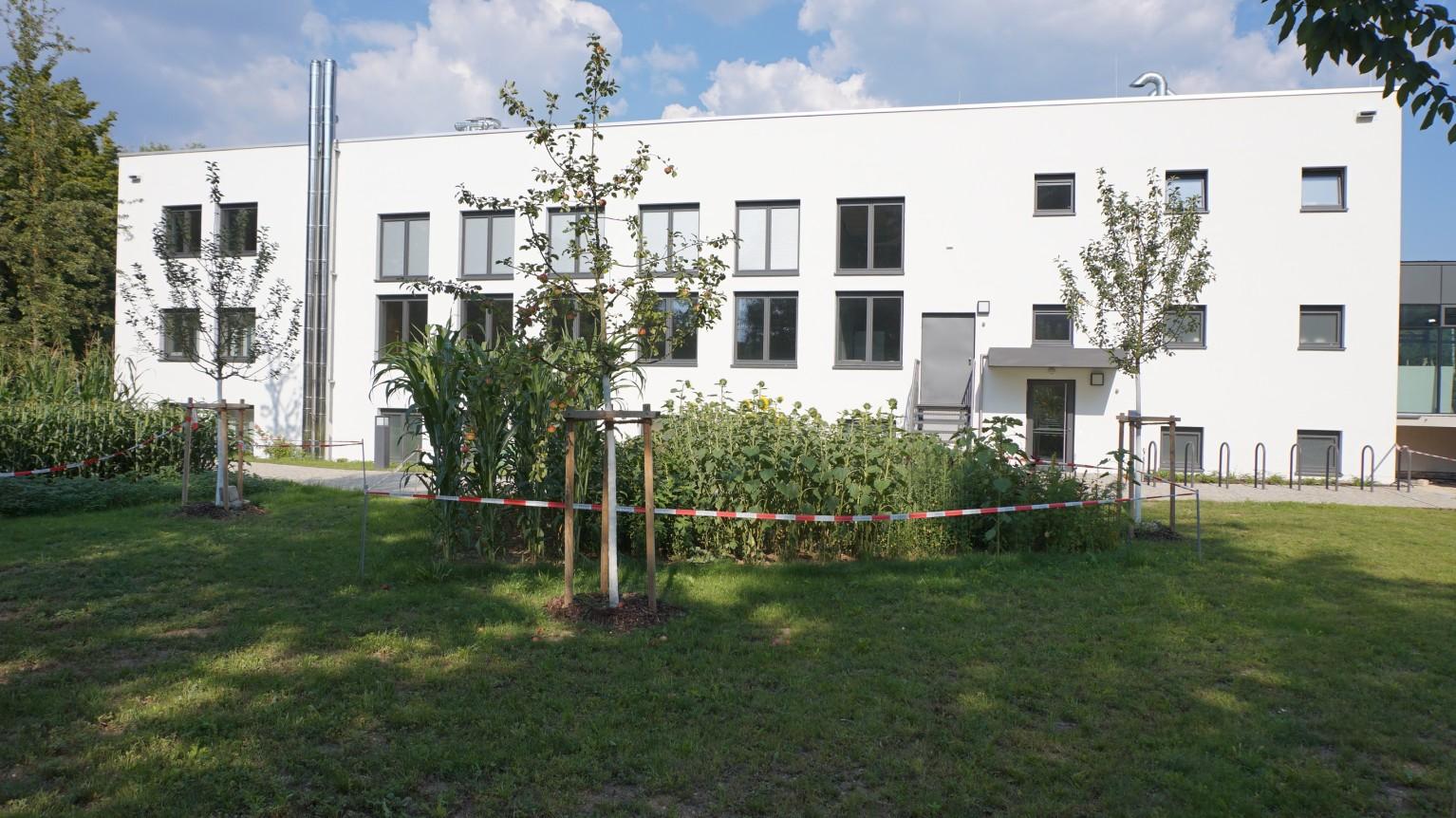 Bbv Regensburg